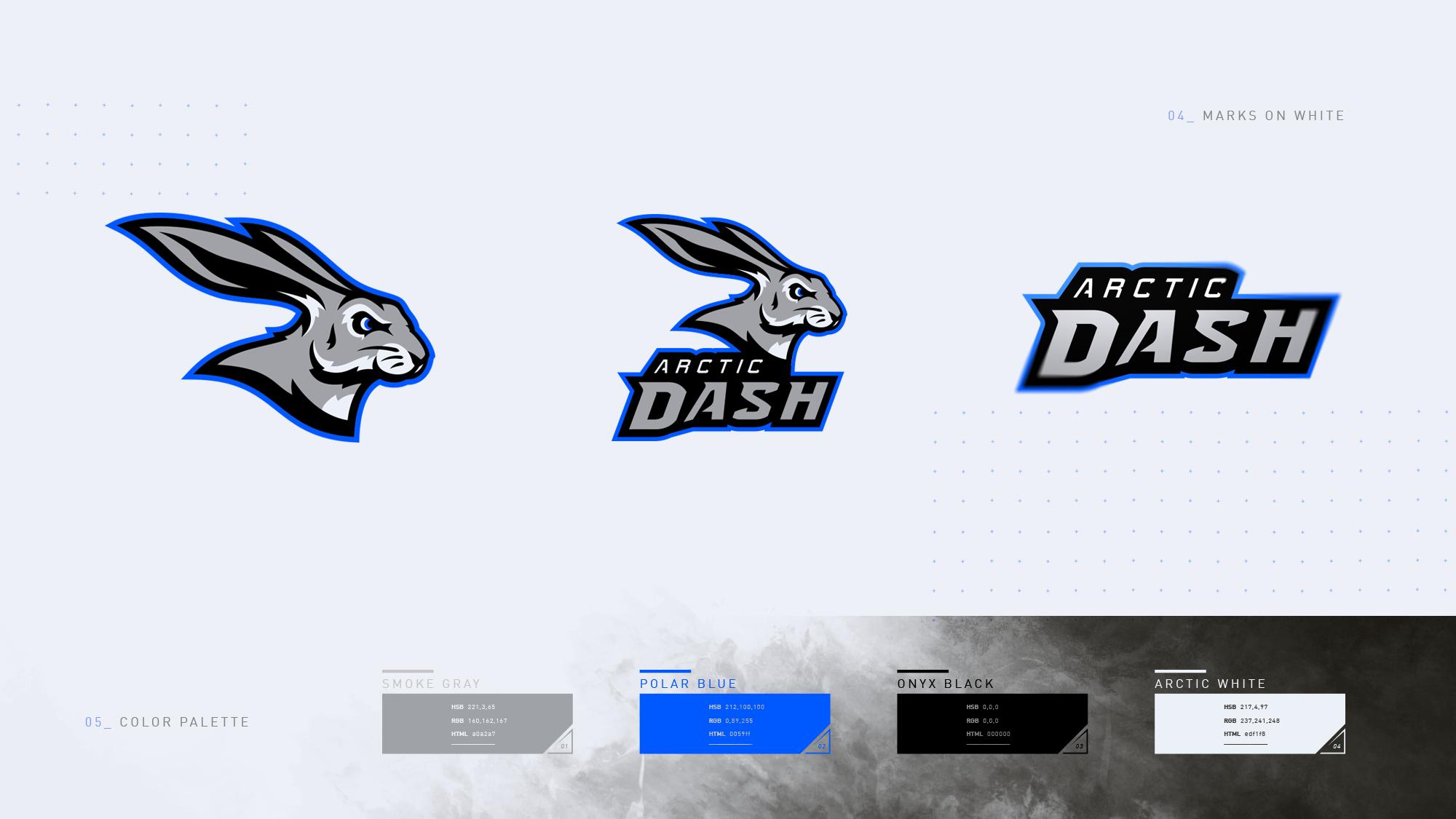 Sports Branding + Identity for concept team Arctic Dash.
