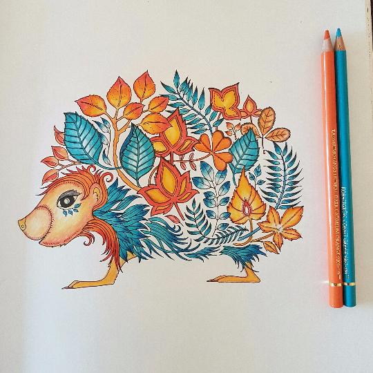 Gabriela73 30 09 2016 Johanna Basford Colouring Gallery Enchanted Forest Coloring Book Enchanted Forest Coloring Johanna Basford Coloring Book