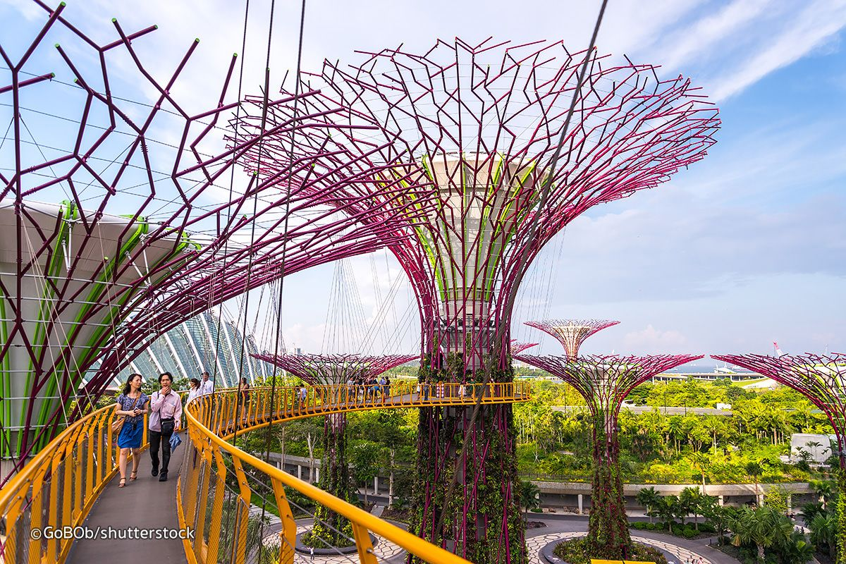 gardens by the bay is a huge colourful futuristic park in the bay area of singapore the famous supertree structures offer an impressive skywalk - Garden By The Bay Food
