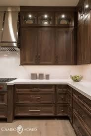 Cabinet Walnut Stain And White Counter Non Kitchen Cabinets Kitchens