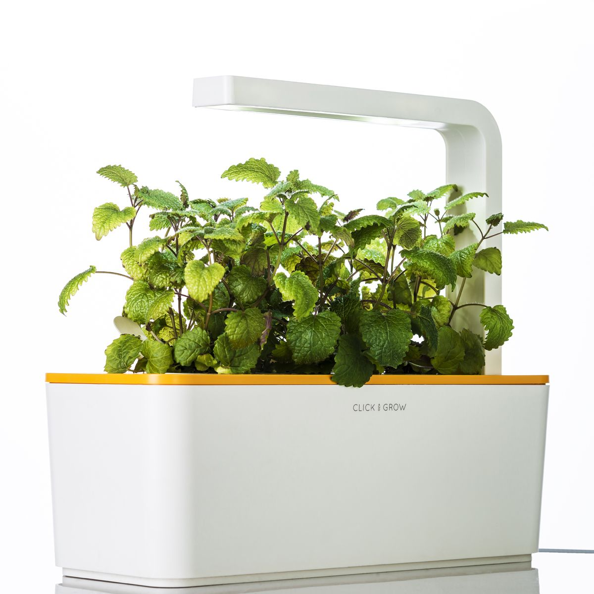 Click Grow Officially Launches Smart Herb Garden We Are 400 x 300