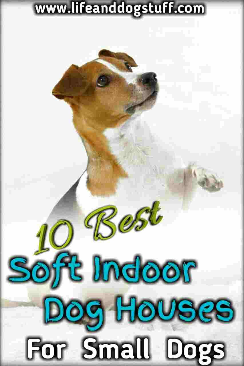 10 Best Soft Indoor Dog Houses For Small Dogs Funny Animals With