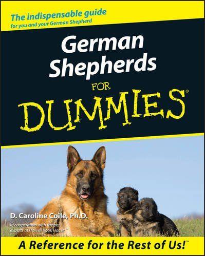 Badass German Shepherd Names For Males And Females Buy German
