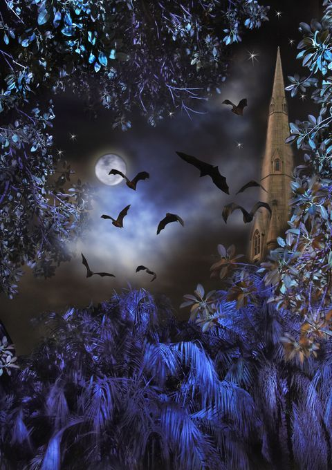 "Photo ""NightfallandBeyond"" by denglish"
