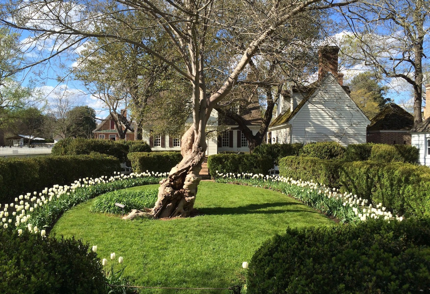 Love Of Colonial Williamsburg Williamsburg Yorktown Daily Book