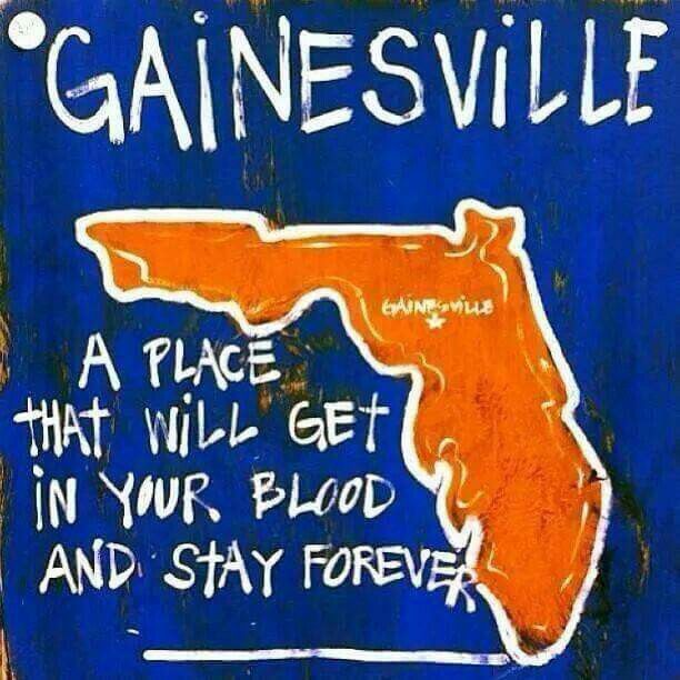 Pin by Brenda Panke on It's great to be a Florida gator