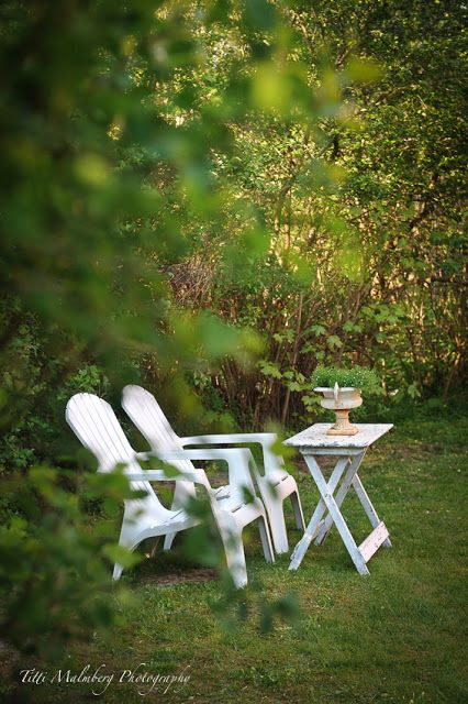 Awesome Hwit Blog Spring Beauty Winds In The Backyard Creativecarmelina Interior Chair Design Creativecarmelinacom