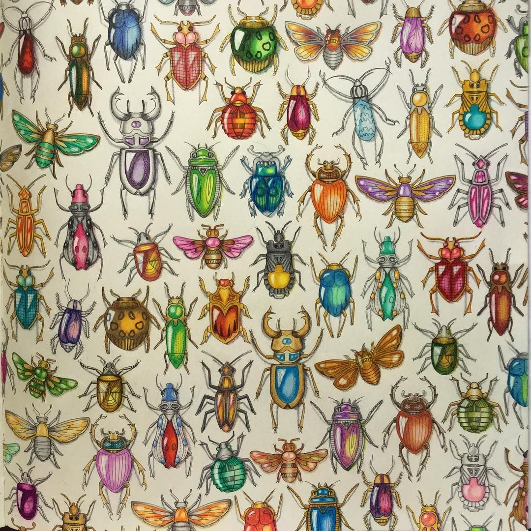 Bugs Took A Long Time But Had Fun Doing It Secretgardencoloringbook Johannabasford Johanna Basford BooksJohanna Secret GardenColouringColoring