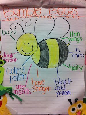 Bee Anchor Chart # science