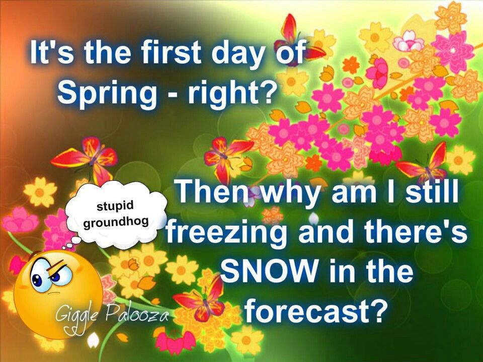 Snow On First Day Of Spring Makes Me >> 1st Day Of Spring And Snow In Forecast Quotes 1st Day Of Spring