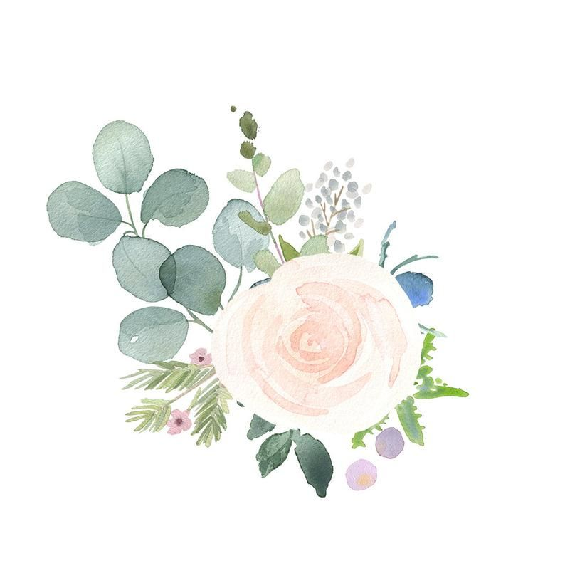 Floral Bouquet Clipart Watercolor Clip Art Flower Png Files With White Roses Thistles And Eucalyptus Leaves Watercolor Flowers Floral Watercolor Watercolor Clipart
