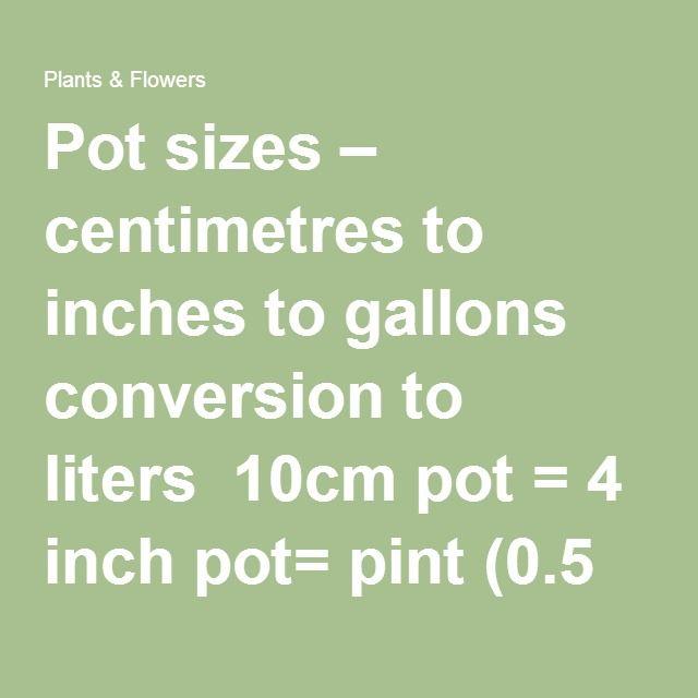Plant Vs Pot Size Pot Planting Flowers Plants