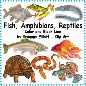 Fish Amphibians and Reptiles - Semi - Realistic Clip Art ...