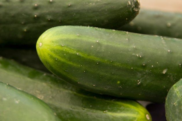How to Grow Cucumbers in a 5Gallon Bucket is part of Cucumber plant, Growing cucumbers, Cucumber seeds, Growing tomatoes, Cucumber trellis, Tomato farming - You can create a lowcost patio garden by growing cucumbers in a 5gallon bucket  The process requires few supplies and works as well as using more expensive containers sold at garden supply stores