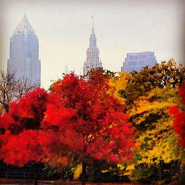 Fall In Cleveland @mikebrookbank (Mike Brookbank)