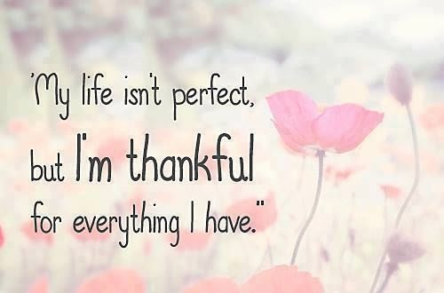 My Life May Not Be Perfect Because Nothing Really Is But I Am So Very Thankful For Everything I Have Grateful Quotes Thankful Quotes Inspirational Quotes