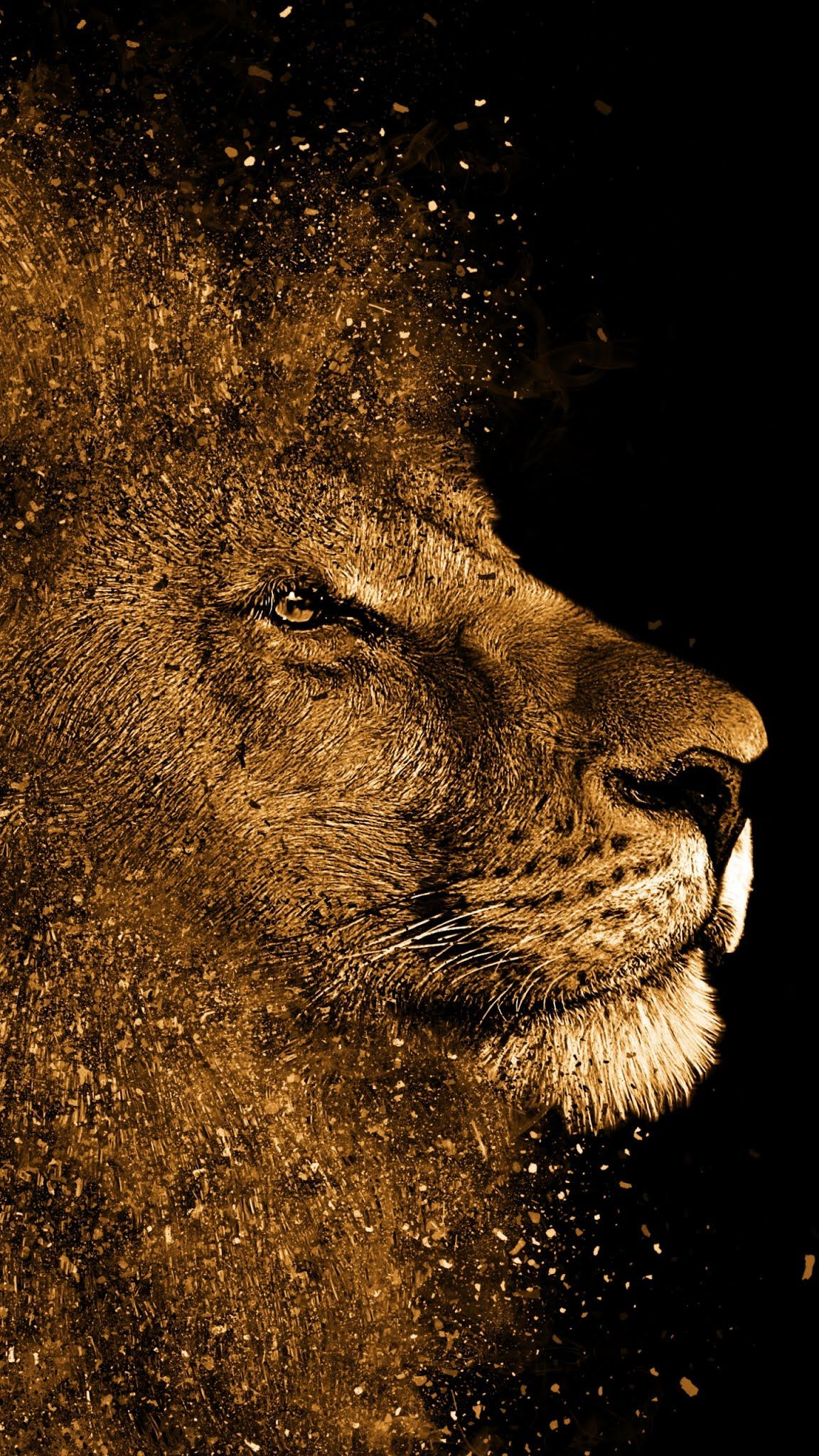 Lion Painting Art Work Mobile Wallpaper Animal Terrestrial Lion