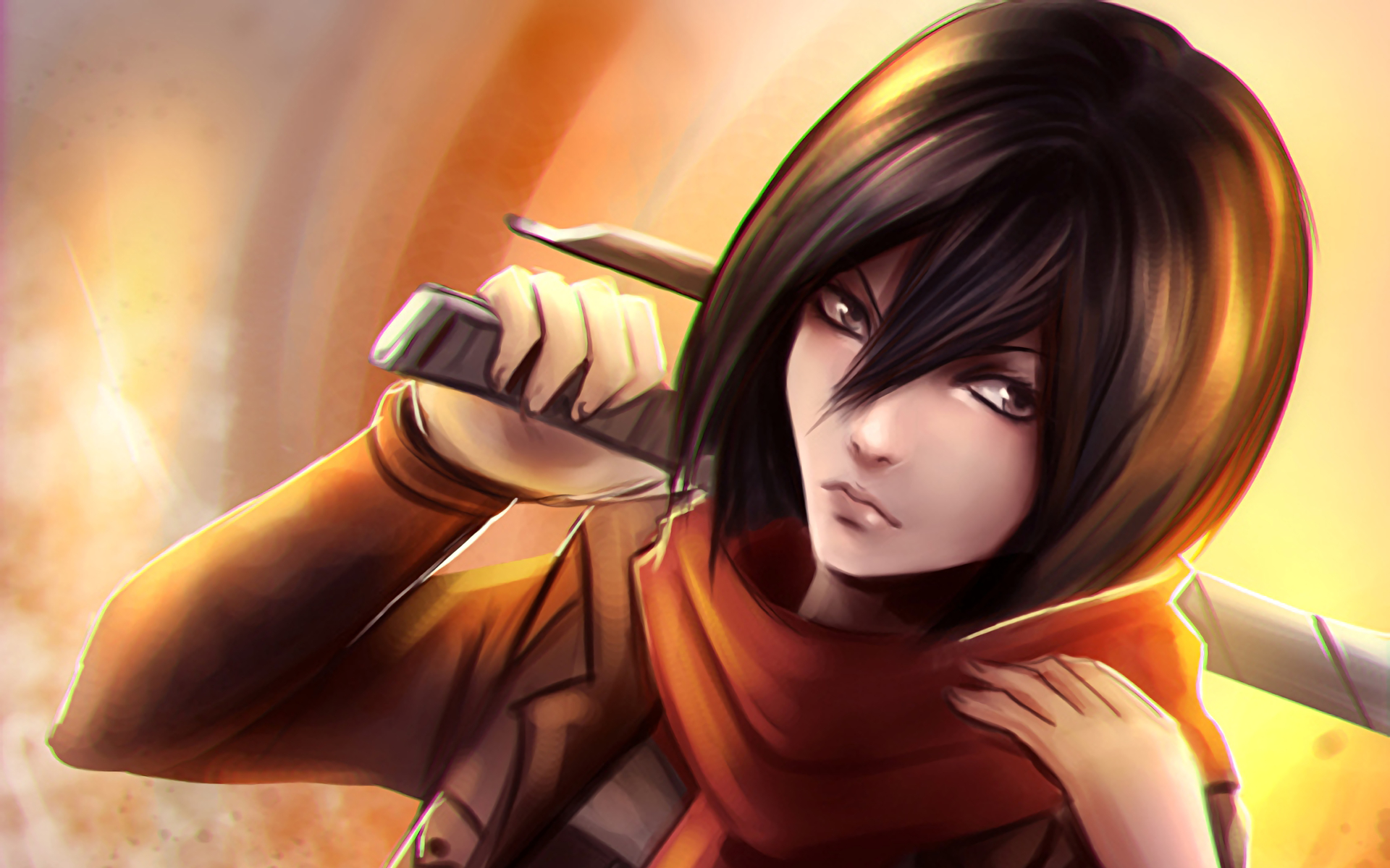 Anime Attack On Titan Shingeki No Kyojin Mikasa Ackerman