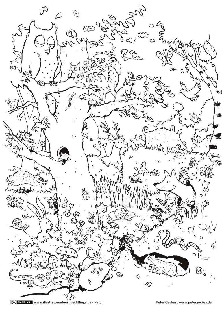 Natur - Wald Tiere - Guckes  Ausmalbilder tiere, Ausmalen, Tiere