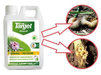 Biomass Sugar Niezawodny Sposob Na Pedraki I Nicienie Biomass Beef Food