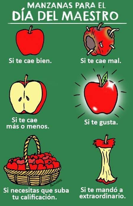Manzanas para el día del maestro...   Feliz dia del ...