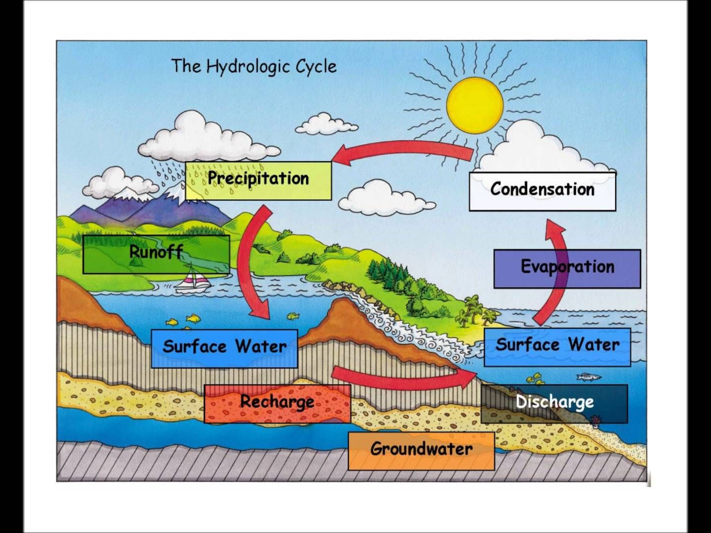 Explain Water Cycle With Diagram Ba Falcon Wiring Make Your Own Bracelet Educate Pinterest