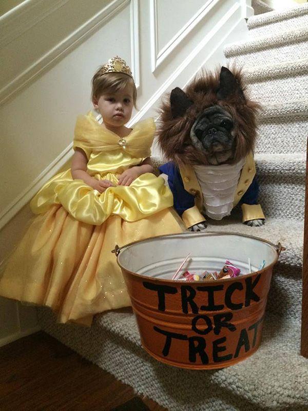 beauty and beast costume kid dog - Buscar con Google