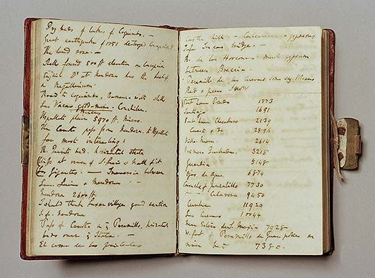 Two Pages From One Of Charles Darwin S Beagle Voyage Notebooks