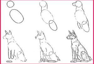 Pencil Drawings for Beginners