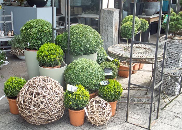 Dise o terrazas con macetas dise o de jardines for Cerrar valla jardin