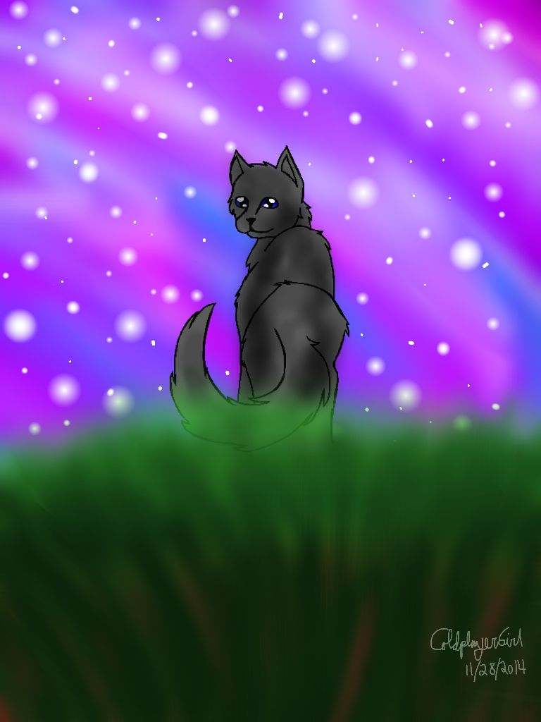 Cinderpelt Warrior Cats Background Wallpaper Just Screenshot