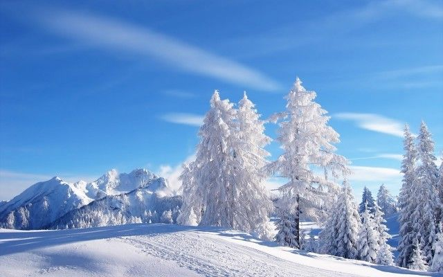 High Resolution Winter Images Free Winter Landscape Winter Nature Winter Scenes
