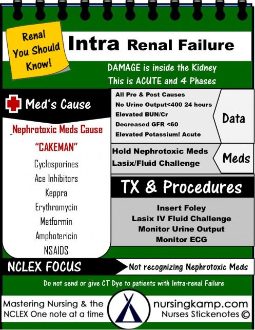 Nursing KAMP - The Nurses Notes on Nursing The Renal KAMP #nursing