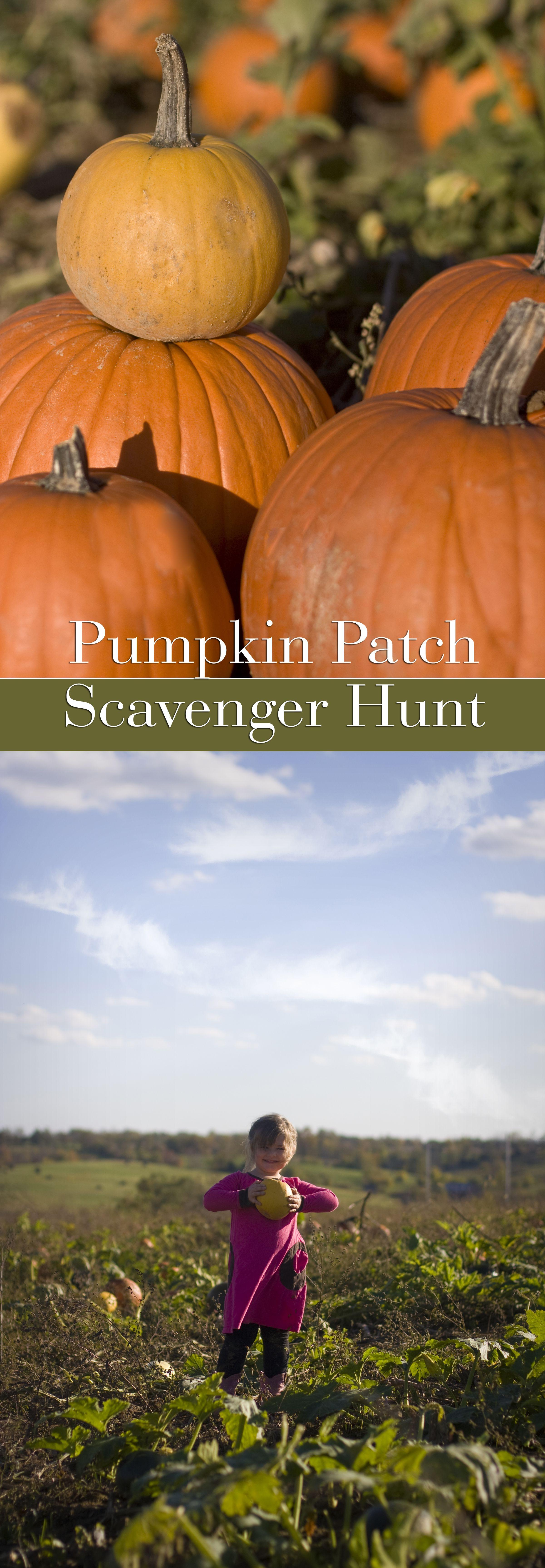 Such a Fun Pumpkin Patch Scavenger Hunt