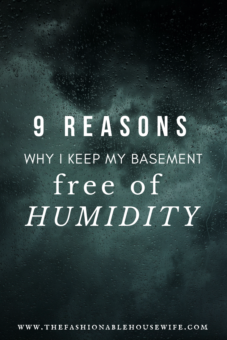 9 Reasons Why I Keep My Basement Free of Humidity | Mould