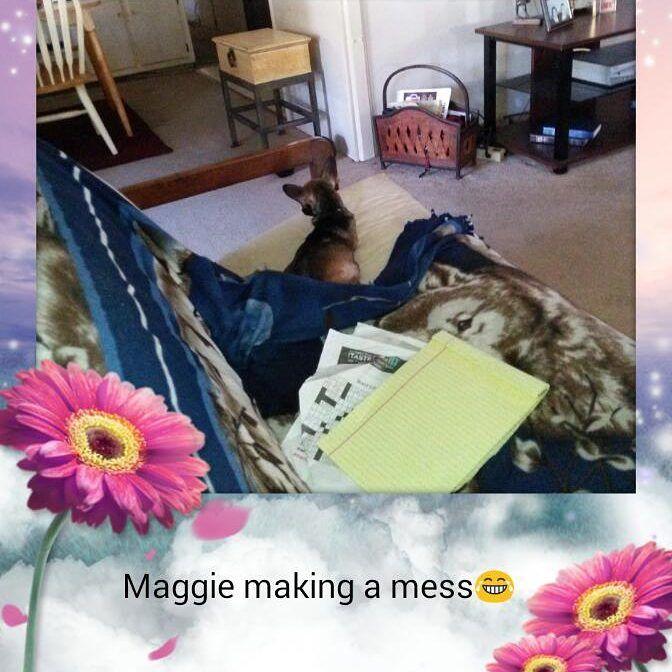 #fb #maggie