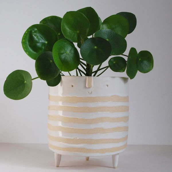 Products With Images Planters 400 x 300