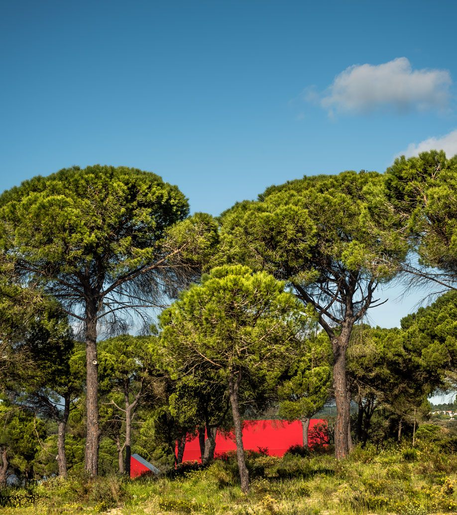 A Bright Red Dramatically Peak Roofed Home In Portugal Farm Buildings Plant Life Red Paint Colors