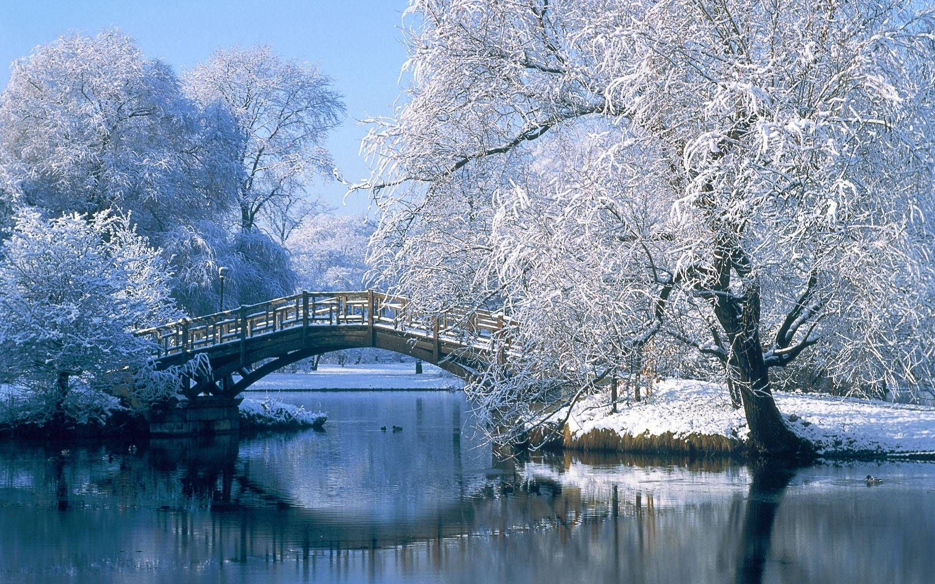 Winter Pictures Beautiful Photos, Photo Gallery