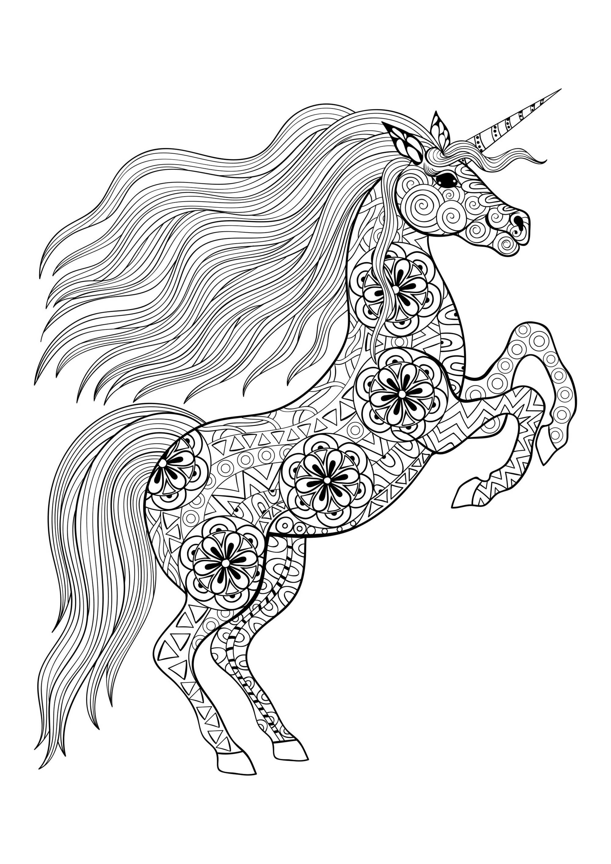 Unicorn On Its Two Back Legs Unicorns Coloring Pages For Adults