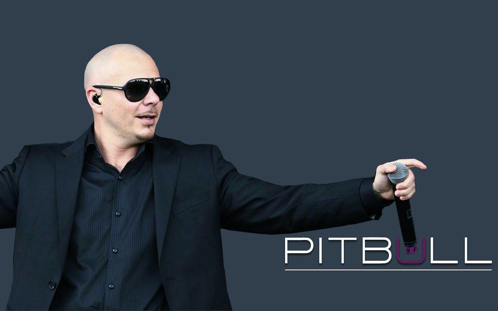 Download Top 10 Best Pitbull Song Armando christian