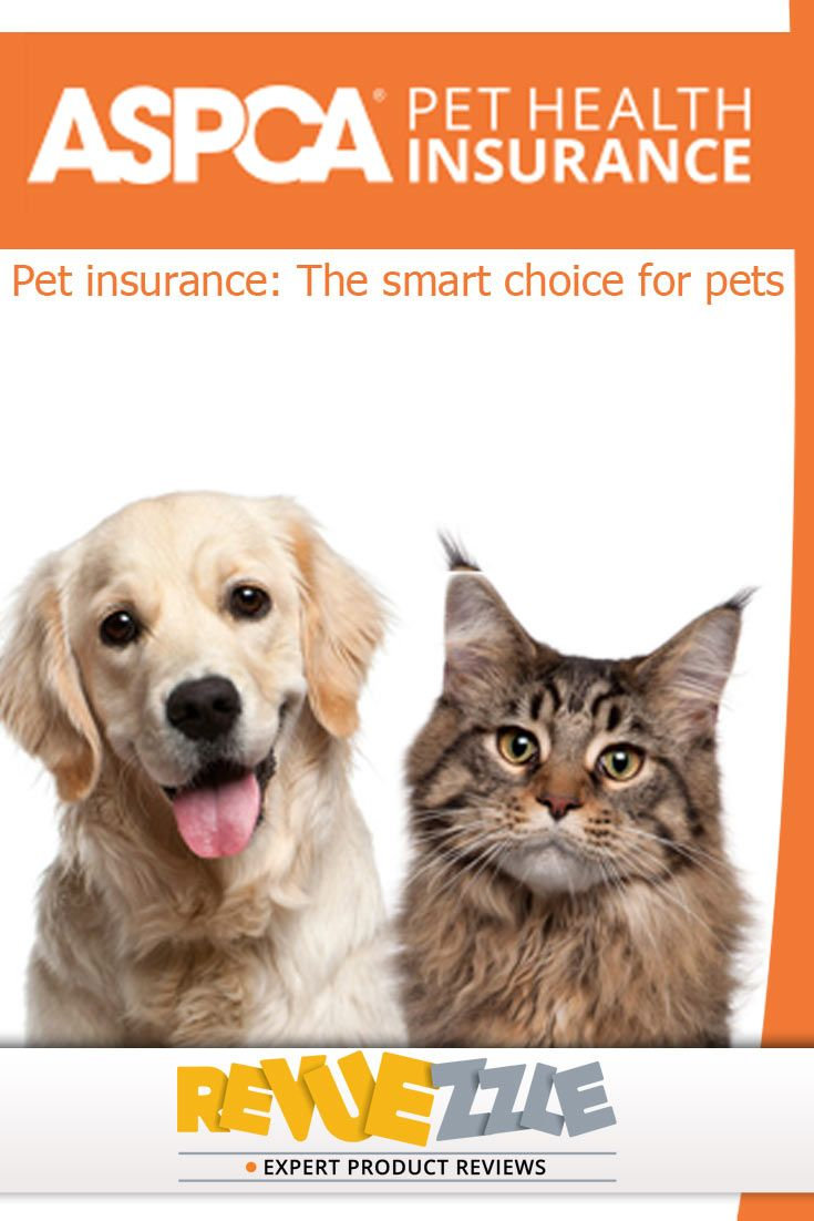 Aspca Insurance Review Pet Insurance Reviews Pet Health