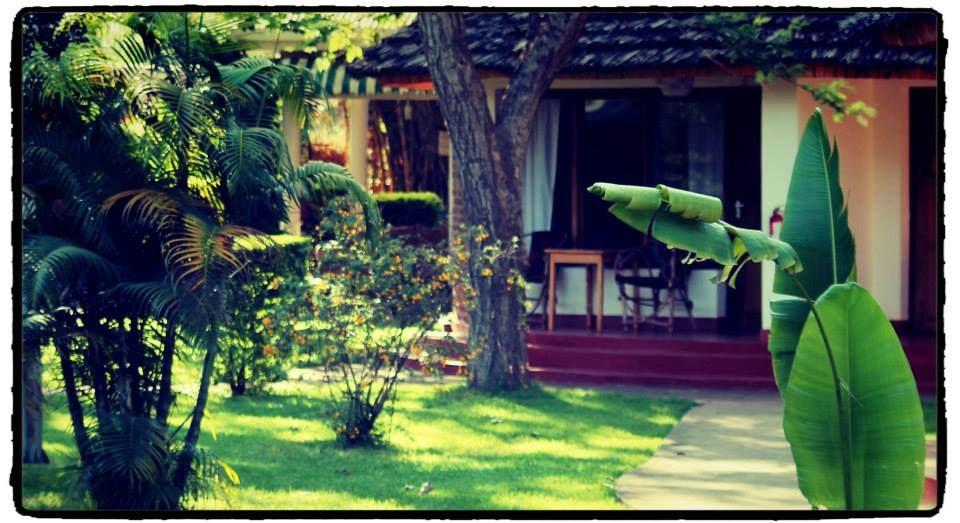 Beautiful Safari Cottages @ Ilboru Safari Lodge #Tanzania#Safarilife#Ilborusafarilodge