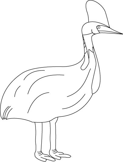 cassowary coloring pages - photo#11