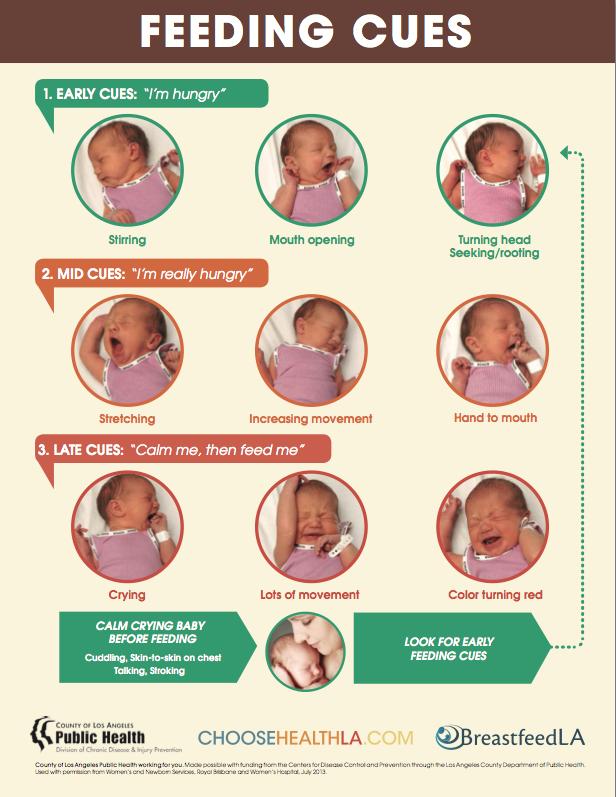 30 Breastfeeding Posters Ideas Breastfeeding Breastfeeding Poster Breastfeeding Tips