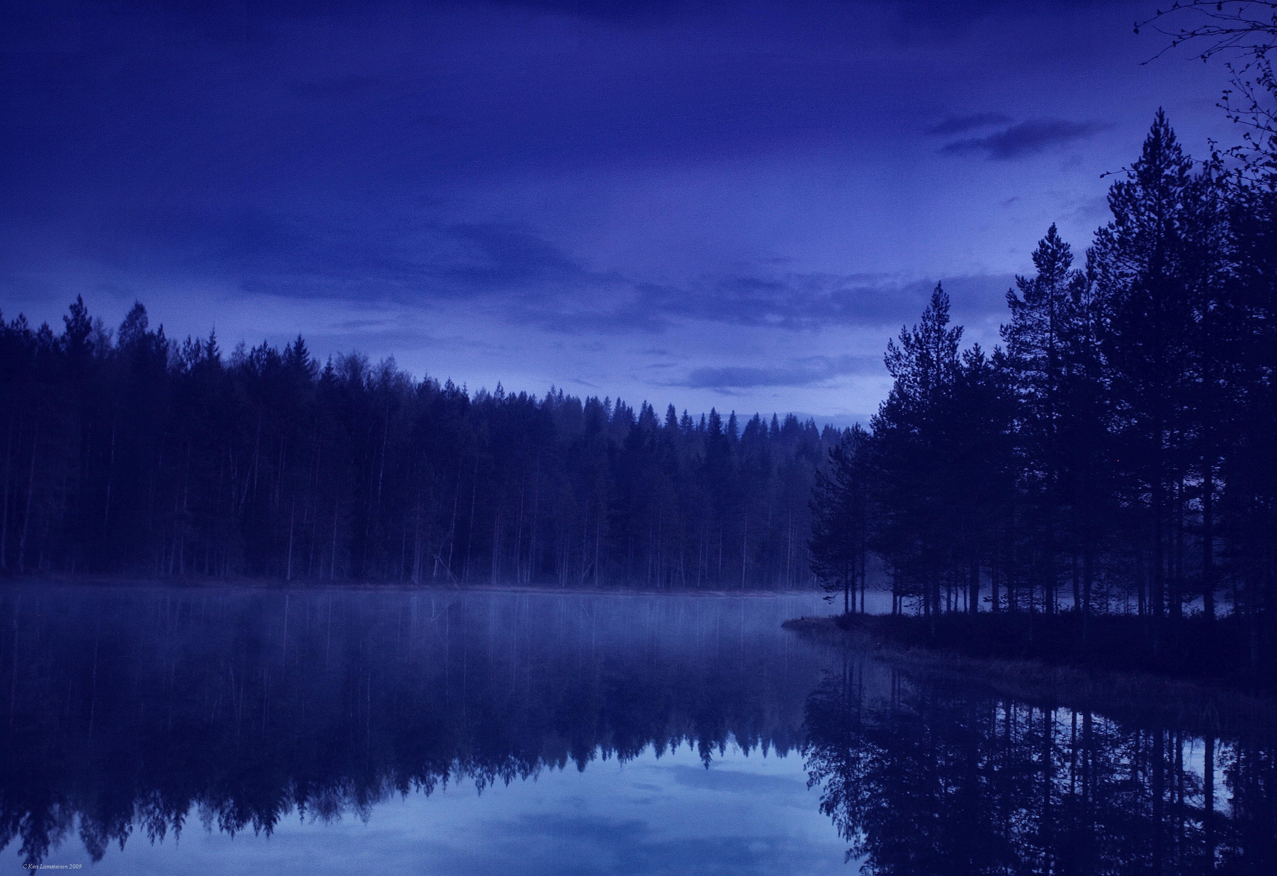 Forest Lake At Night Desktop Wallpapers And Photos Free Downloads Landscape Scenery Night Forest Scenery