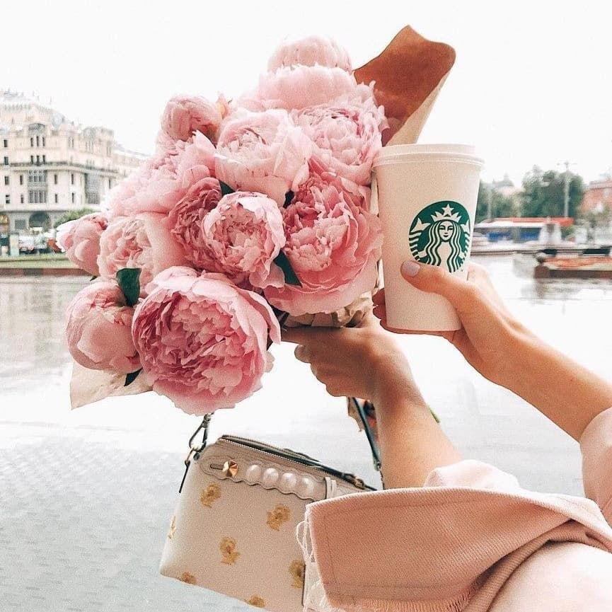 New The 10 Best Art With Pictures Instagood Instaaz Instagram Azerbaijan Baku Instafollow Aztagram Nezhn Flowers Photography Peonies Pink Peonies