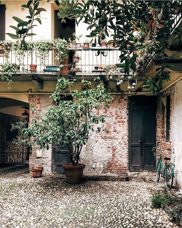 Milano Courtyard Garden Plants