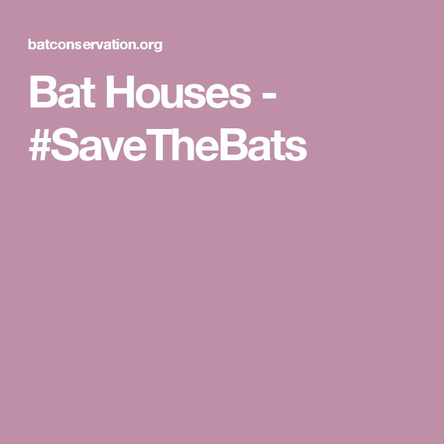 Bat Houses - #SaveTheBats