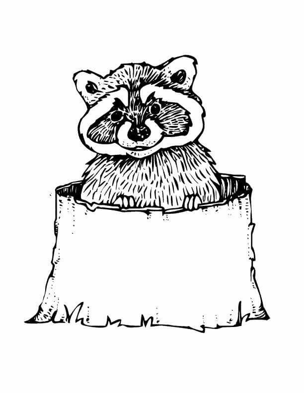 Forest Printable Coloring Pages